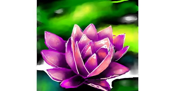 Water lily drawing by Elliev
