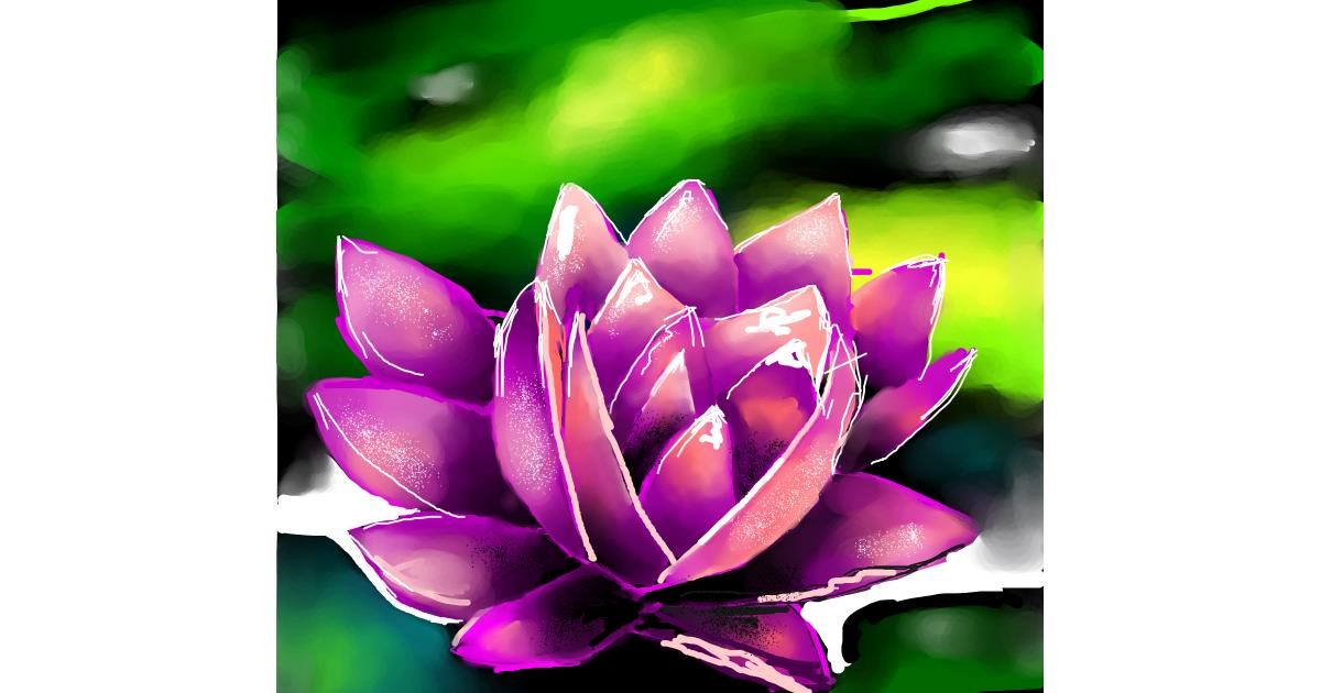 Drawing of Water lily by Elliev
