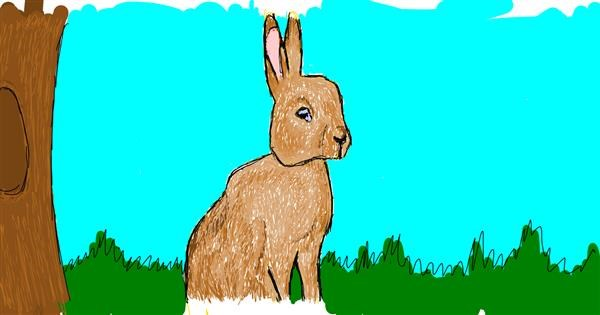 Rabbit drawing by Accound124