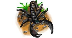 Scorpion drawing by Soaring Sunshine