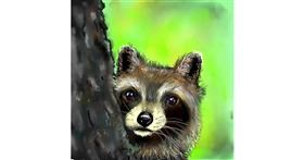 Raccoon drawing by Leah