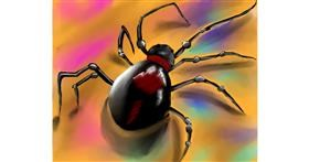 Drawing of Spider by Freny