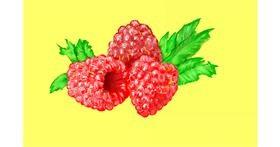 Raspberry drawing by GJP