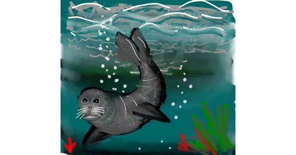 Seal drawing by Naaz