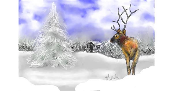 Reindeer drawing by Kai 🐾