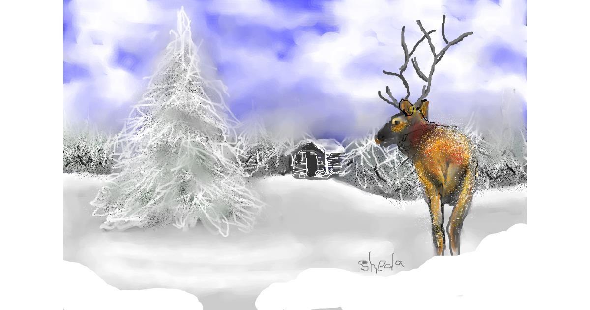 Drawing of Reindeer by Kai 🐾