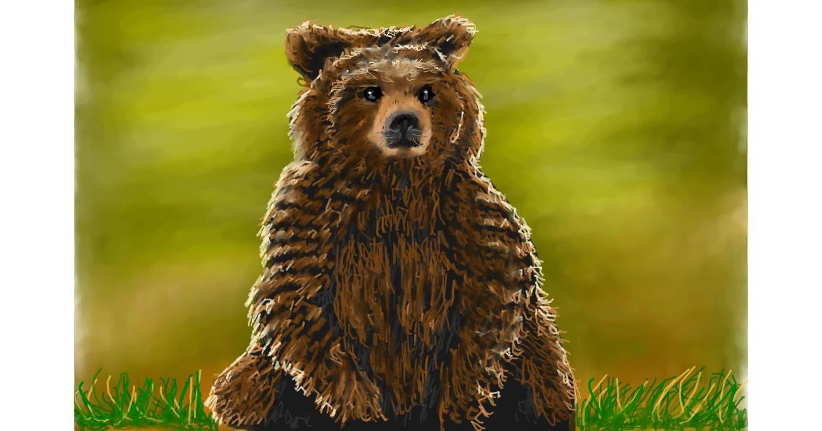 Bear drawing by Bicho