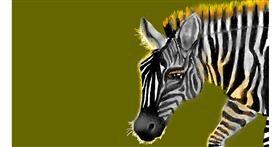 Zebra drawing by SAM AKA MARGARET 🙄