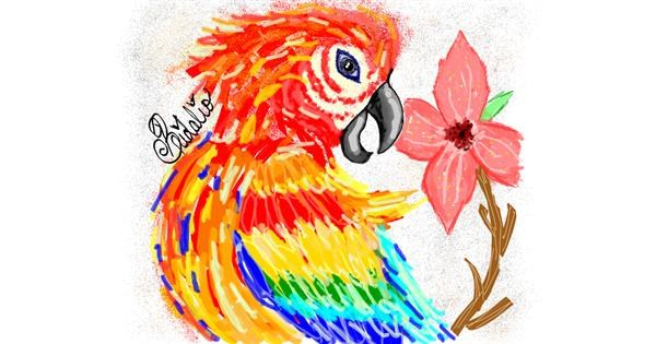 Parrot drawing by BRIDALIO🍌
