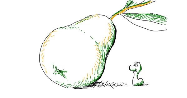 Pear drawing by Carm