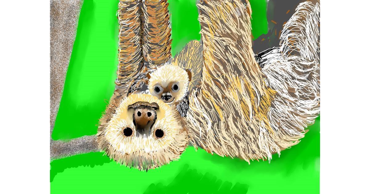 Drawing of Sloth by SAM AKA MARGARET 🙄