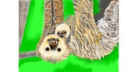 Sloth drawing by SAM AKA MARGARET 🙄