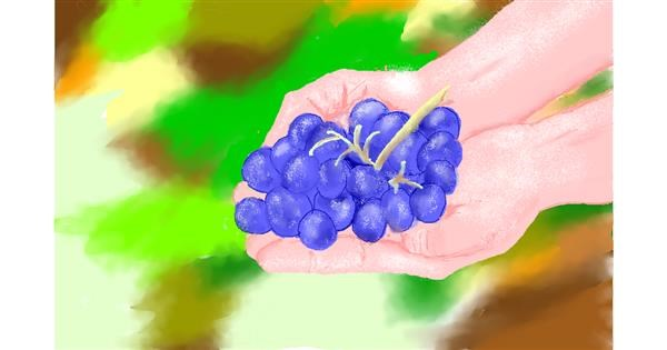 Grapes drawing by GJP