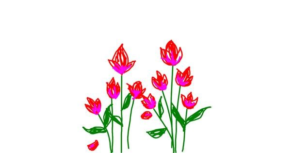 Tulips drawing by Sepha
