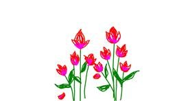 Drawing of Tulips by Sepha