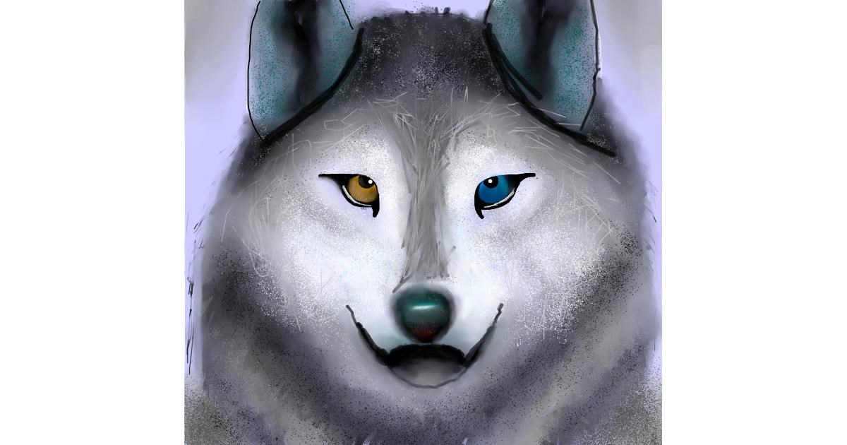 Wolf drawing by 🇭🇰 Acem Lam