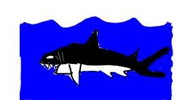 Shark drawing by Zezaf