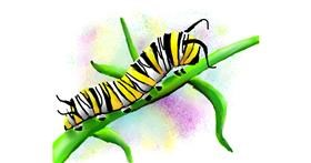 Caterpillar drawing by Autumn