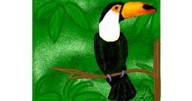 Drawing of Toucan by Nonuvyrbiznis