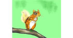 Squirrel drawing by Cec