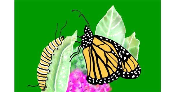 Caterpillar drawing by GJP