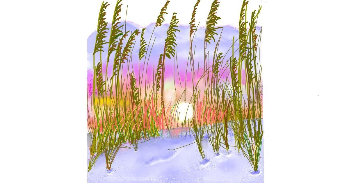 Wheat drawing by GJP