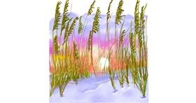 Drawing of Wheat by GJP
