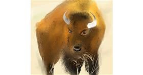 Bison drawing by punee
