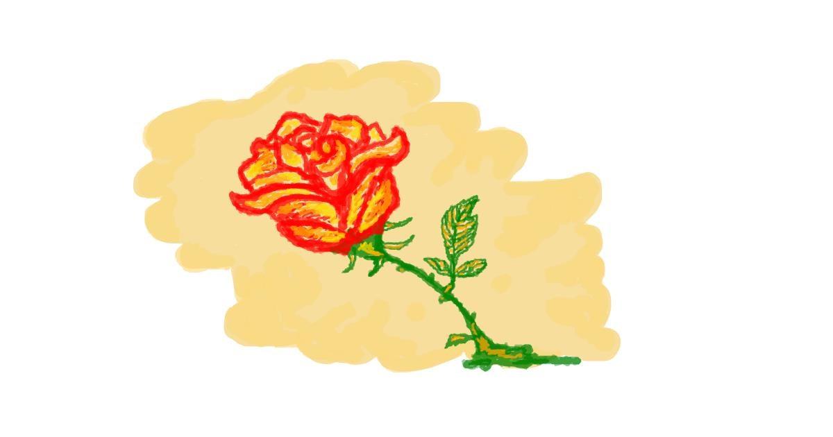 Rose drawing by hahah