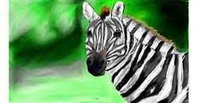 Zebra drawing by Soaring Sunshine