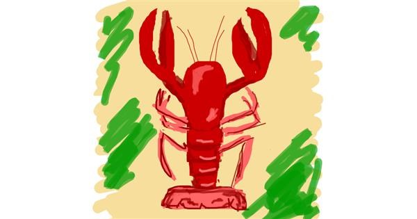 Lobster drawing by Nici