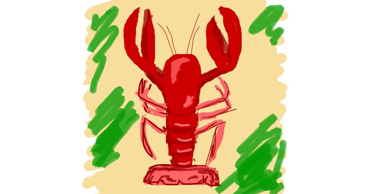 Drawing of Lobster by Nici