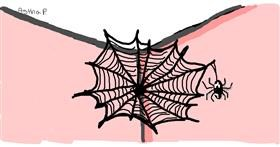 Spider web drawing by Astha