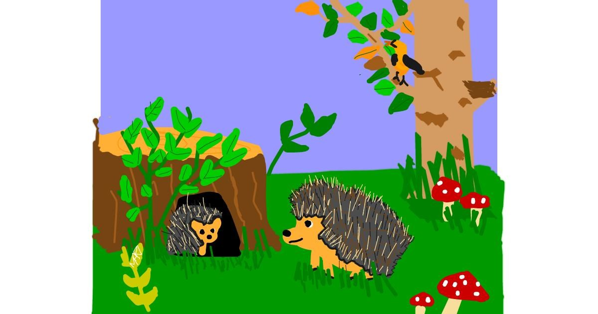 Hedgehog drawing by MaRi