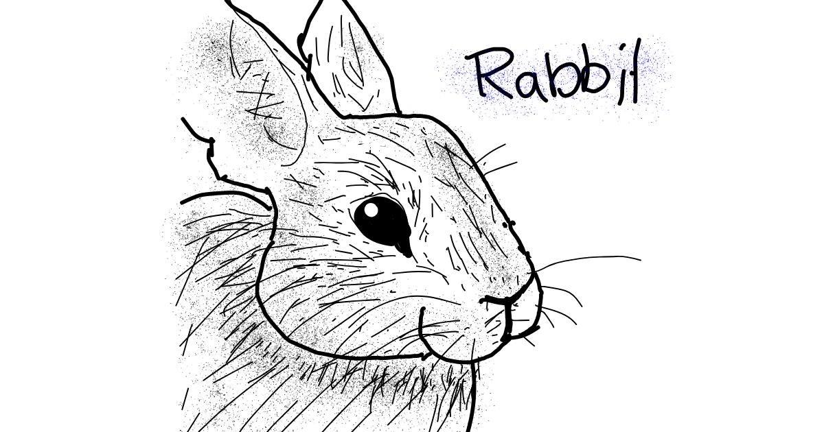 Rabbit drawing by Panda
