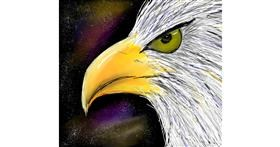 Drawing of Eagle by Zeemal
