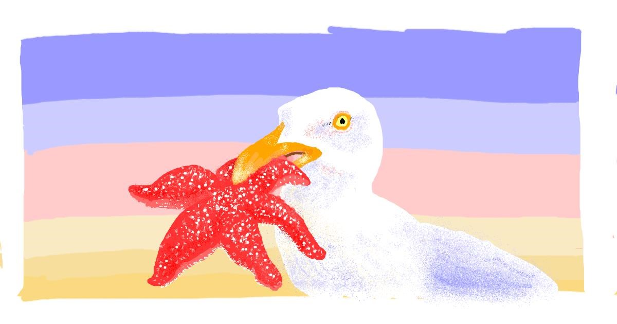 Starfish drawing by Helena