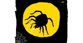 Spider drawing by bloop