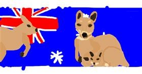 Kangaroo drawing by Emmaisnotintresetedand