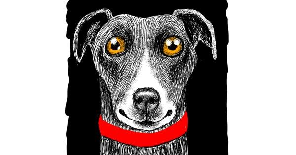 Dog drawing by Jjj player