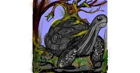 Tortoise drawing by SIREN