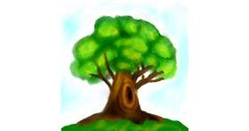 Drawing of Tree by Lou