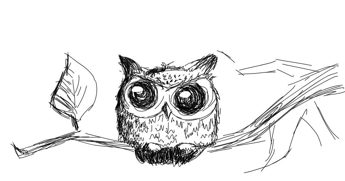 Owl drawing by Kossara