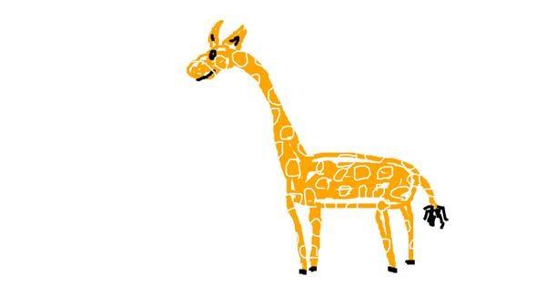 Giraffe drawing by Marija