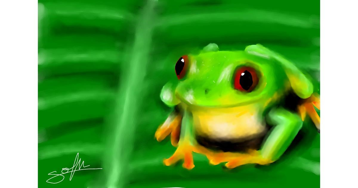 Drawing of Frog by Sophie_draw24