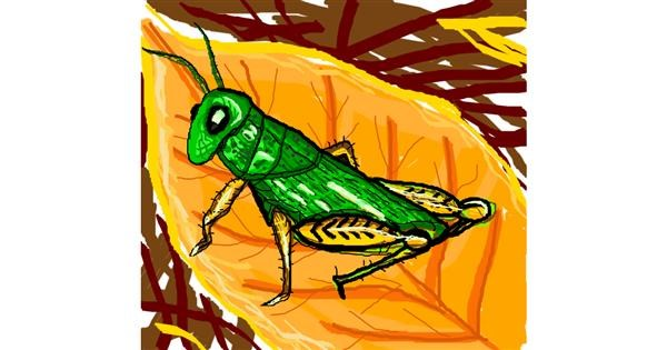 Grasshopper drawing by MRPANDA2