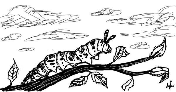 Caterpillar drawing by BreadBoi