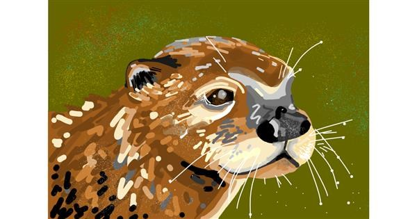 Otter drawing by Grey