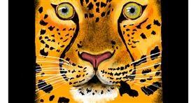Drawing of Cheetah by SAM AKA MARGARET 🙄