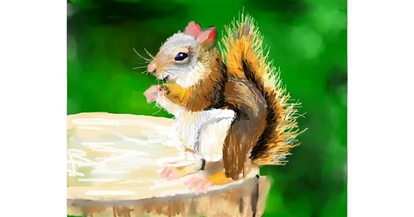 Squirrel drawing by Sky